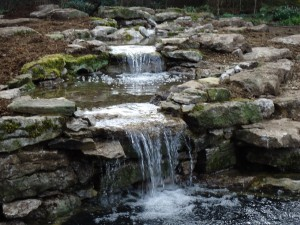Water Feature Landscapes